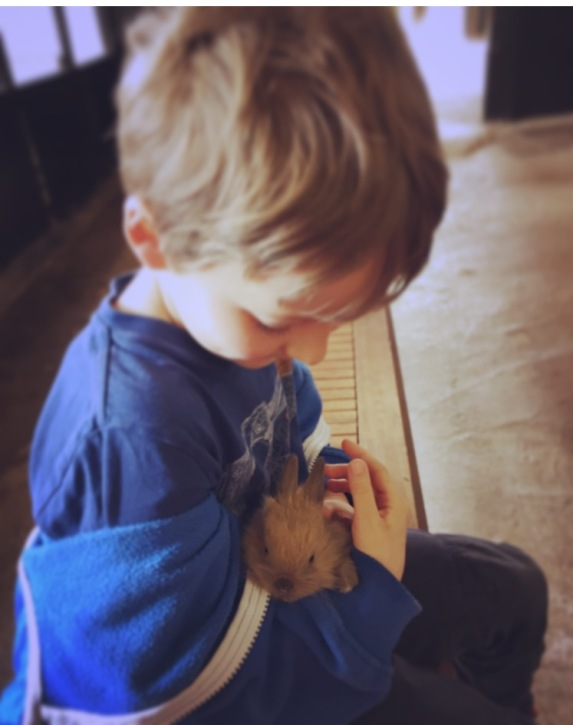 Our son holding a baby bunny rabbit